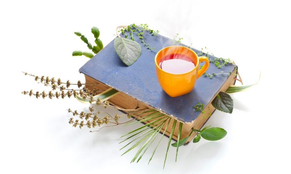 image of encyclopedia and herbal tea